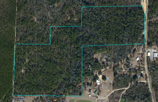 Ropp- 53 acres in Baldwin County